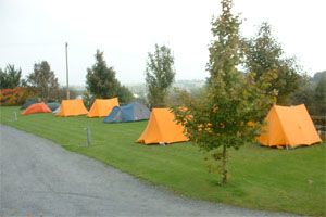 35003_104893_35003_treegrove_camping3
